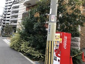 大阪市大正区 マンション剪定の画像