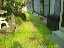 堺市K様邸施工前