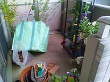 大阪市南区タワーマンションにてのベランダ最狭ガーデン施工前