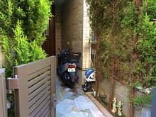 ゴールドクレスト撤去からレッドロビンの生垣へ施工前
