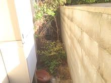 和庭及びナチュラルガーデン施工前