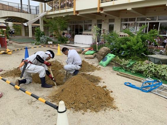 大阪府 吹田市 幼稚園 コナラ 植栽工事