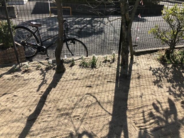 大阪市住吉区 H幼稚園 植木移植などの画像